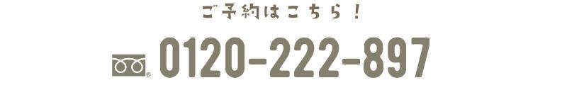 20161225_ev-01_15